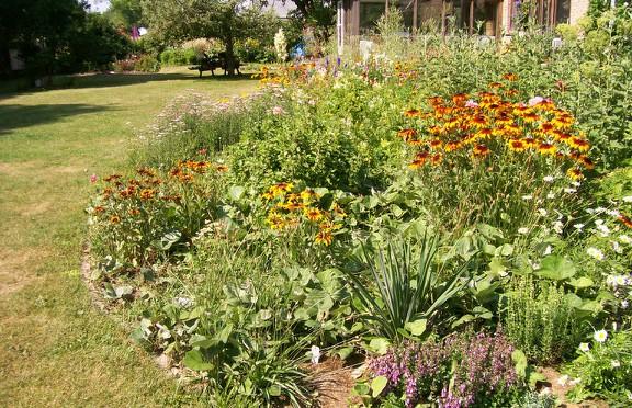 Susan Elliotson's Herb Garden - Formal Bed