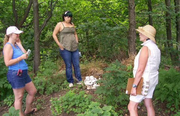 Susan Elliotson's Herb Walk
