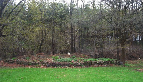 Susan Elliotson's Herb Garden - The Stone Wall Garden